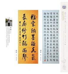 Chinese Calligraphy - Bo Xiao