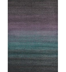 Kalora - 2x4 Ashbury Reflections Rug (5489/1V98 60110)