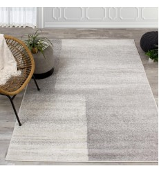 Kalora - 3x5 Focus Grey Soft Transition Rectangle Rug (5760/9363 80150)