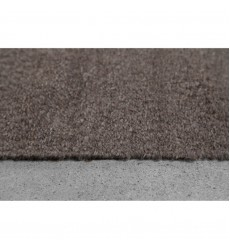 Earthtone REAR-20171-912 - Indoor Area Rug - Renwil
