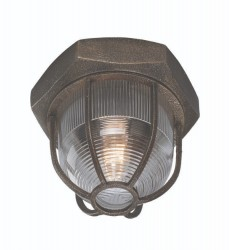 Troy -  Acme 1Lt Ceiling Flush (C3890)