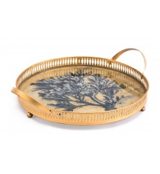 Coral Tray Blue (A10997)