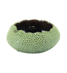 Cartago Bowl Green (A12134)