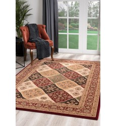 Sunshine - 10x13 Jaipur 2195 Red Rectangle Rug
