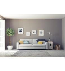 Sunshine - 3x5 Avellino 5822 Grey Rectangle Rug